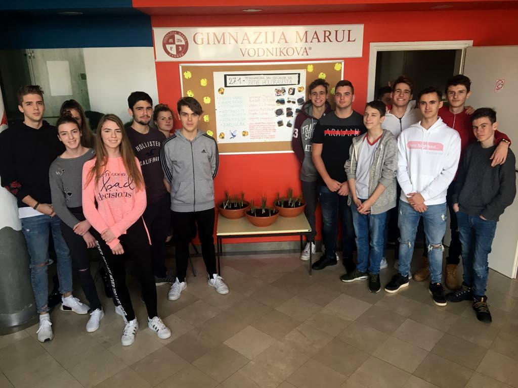 Gimnazija Marul i Projekt Šafran