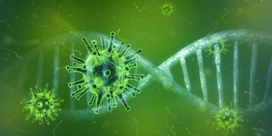 Preporuke postupanja vezane uz nCoV bolesti (Korona virus)